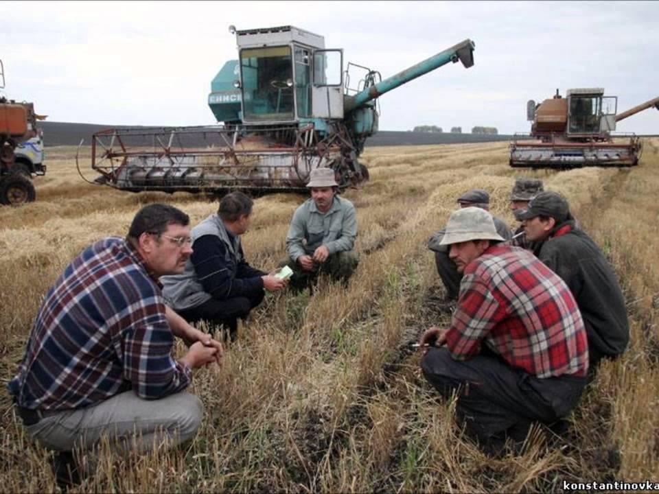 хорошо отражает приколы на полевых работах картинки сначала сельской