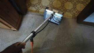 Cleaning 13 year old carpets