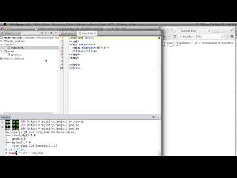 WebStorm - MEAN Stack Walkthrough and Tips