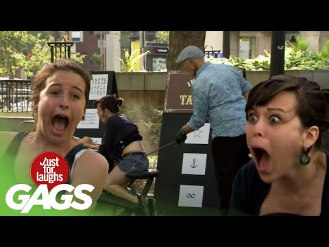 Best of Painful Pranks | Just for Laughs Compilation