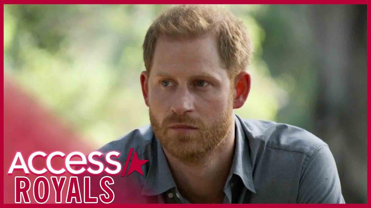 Prince Harry Saddened Baby Archie Will Never Meet Princess Diana
