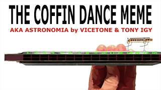 How to Play the Coffin Dance Song on a Tremolo Harmonica With 16 Holes
