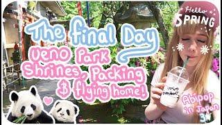 SLEEPY PANDAS & SHRINES?!♪ | The Final Day - Ueno Park & Leaving Japan! | Abipop in Japan 3 - 2017 ♡