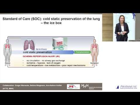 Christine Falk: Immune monitoring for the discrimination of GVHD, rejection and CMV infection