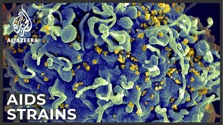 Hiv Research: Scientists Confirm New Viral Strain