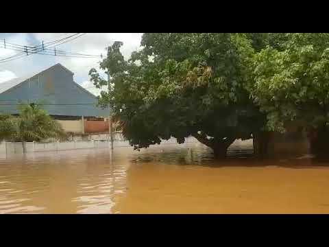 Aquidauana: PMA auxilia atingidos por enchentes, resgata famílias e resgata cutia