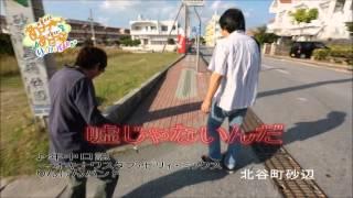 配信期間 2012年12月7日~ □タイトル りんけんバンドさーあっちゃ〜あっ...