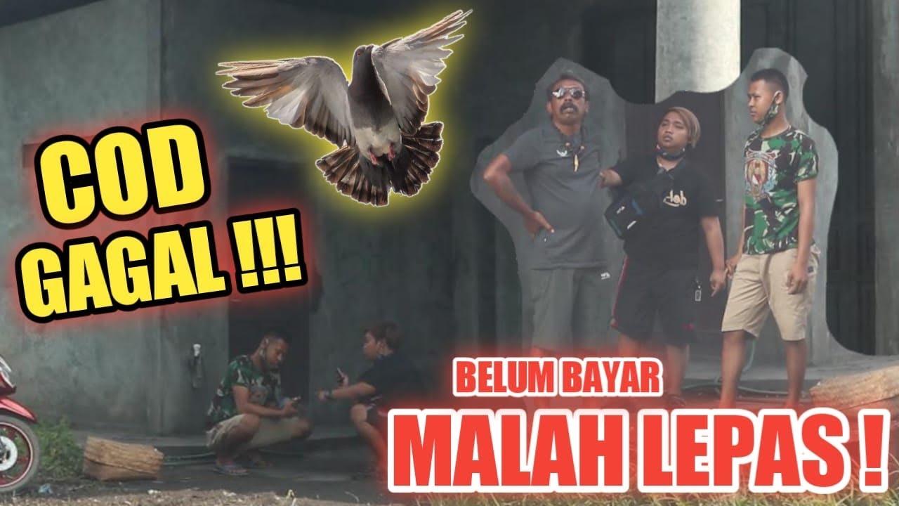COD GAGAL !!! BELUM BAYAR MALAH LEPAS MAU DILAPORIN POLISI !!!
