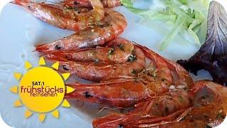 Koch undercover: Moby Dick in Palma de Mallorca | SAT.1 Frühstücksfernsehen | TV
