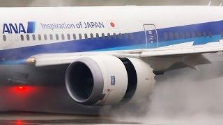 WET RUNWAY! Boeing 787 Dreamliner WATER fight LANDING
