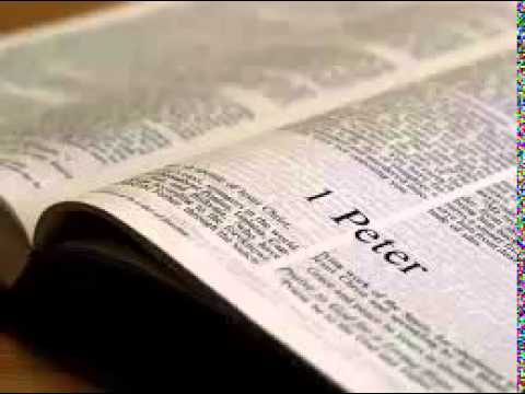1 Peter 1 - New International Version NIV Dramatized Audio Bible