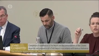 LIVE: The Eighth Amendment Oireachtas Committee are holding their final public meeting thumbnail