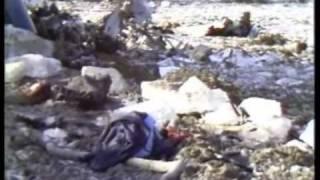 Katastrofa Lotnicza Okęcie 14.03.1980 - Film Dokumentalny