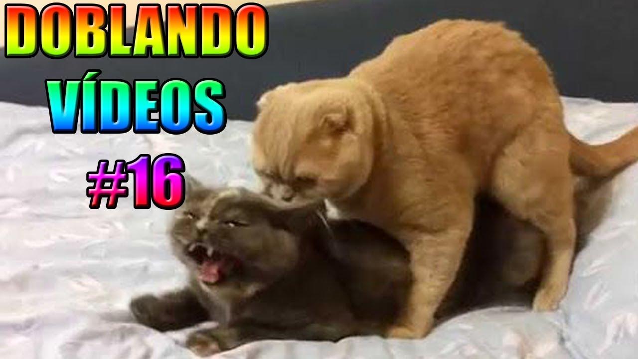 DOBLANDO VÍDEOS #16 - xurxocarreno