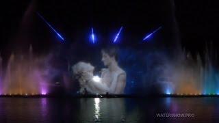 Swan Lake Show for Roshen Fountain