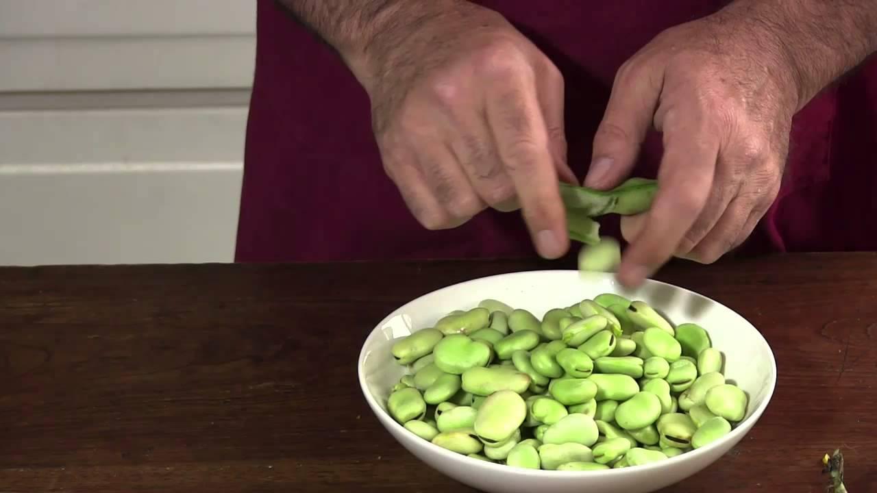 gourmet végétarien] comment préparer des fèves fraîches - youtube