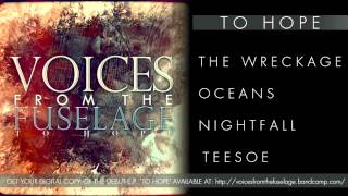 Voices From The Fuselage - TEESOE