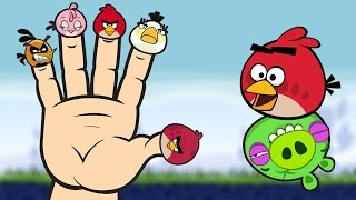 Angry Birds Finger Family Song