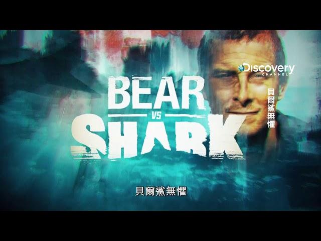 貝爾鯊無懼