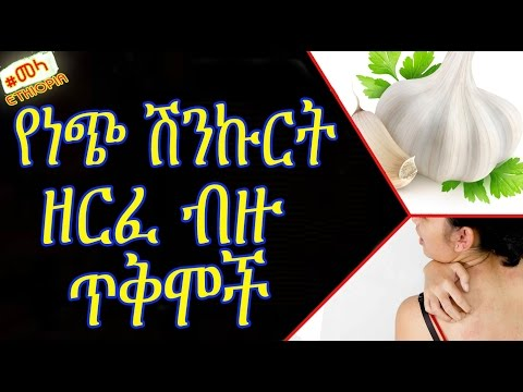 ETHIOPIA - Health Benefits of Garlic in Amharic