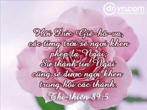 NGƯỜI TÔI YÊU MẾN