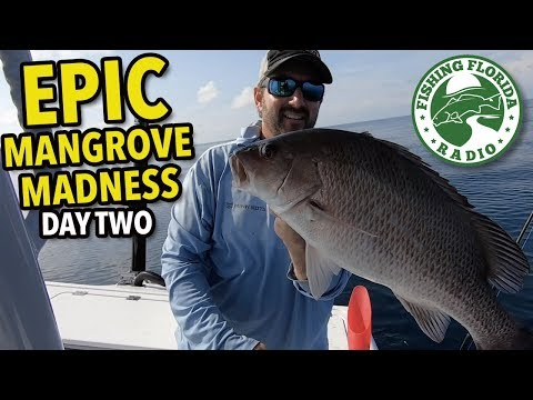 EPIC Mangrove MADNESS - Panama City Beach Nearshore Fishing With Captain Phillip Wilds