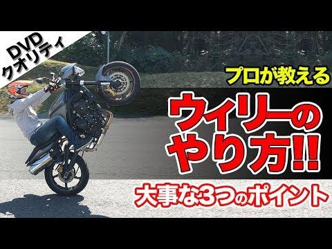 超分かりやすいウィリーのやり方解説【大型バイク】ライディングテクニック