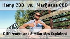 What's the difference between Hemp CBD & Marijuana CBD?