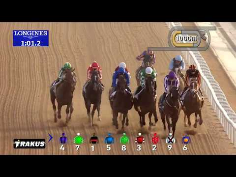 Race 4  UAE Derby Sponsored By Saeed & Mohammed Al Naboodah Group