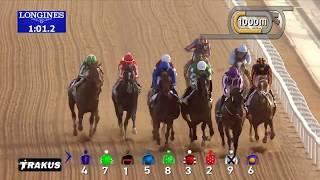 Vidéo de la course PMU UAE DERBY