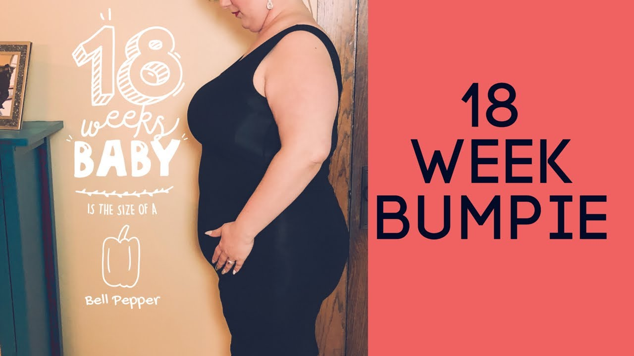 Pregnancy Update 18 Weeks Plus Size Bump Shot Youtube