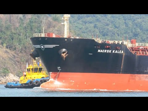 MAERSK KALEA PORT OF SANTOS SHIPSPOTTING AUGUST 2020 #31