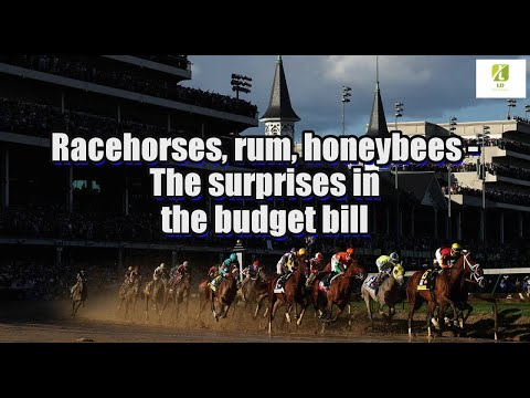 Racehorses, rum, honeybees: The surprises in the budget bill