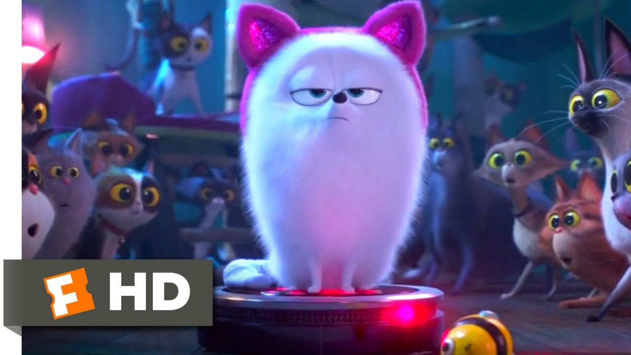 The Secret Life of Pets 2 – Dog vs. Cats Scene (5/10) | Movieclips