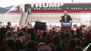 Protester tries to storm stage at Donald Trump rally