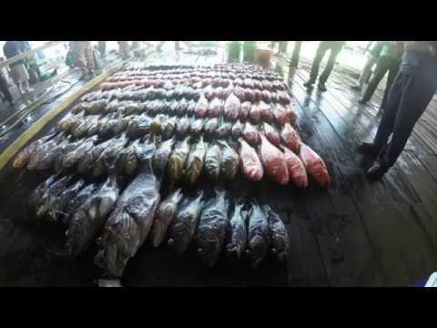 Andaman Fishing Trip 21   25 Oct 2017 Part 2