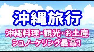 沖縄旅行動画 観光 遊び 買い物 国際通り 久茂地文庫 しまぐくる ゆいレ...