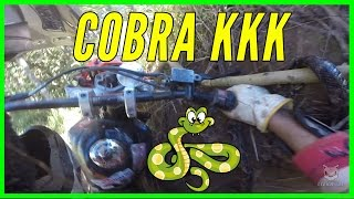 Cobra Quase Pega Piloto na Trilha do Morango 2015 XRE 300 kkkkkk