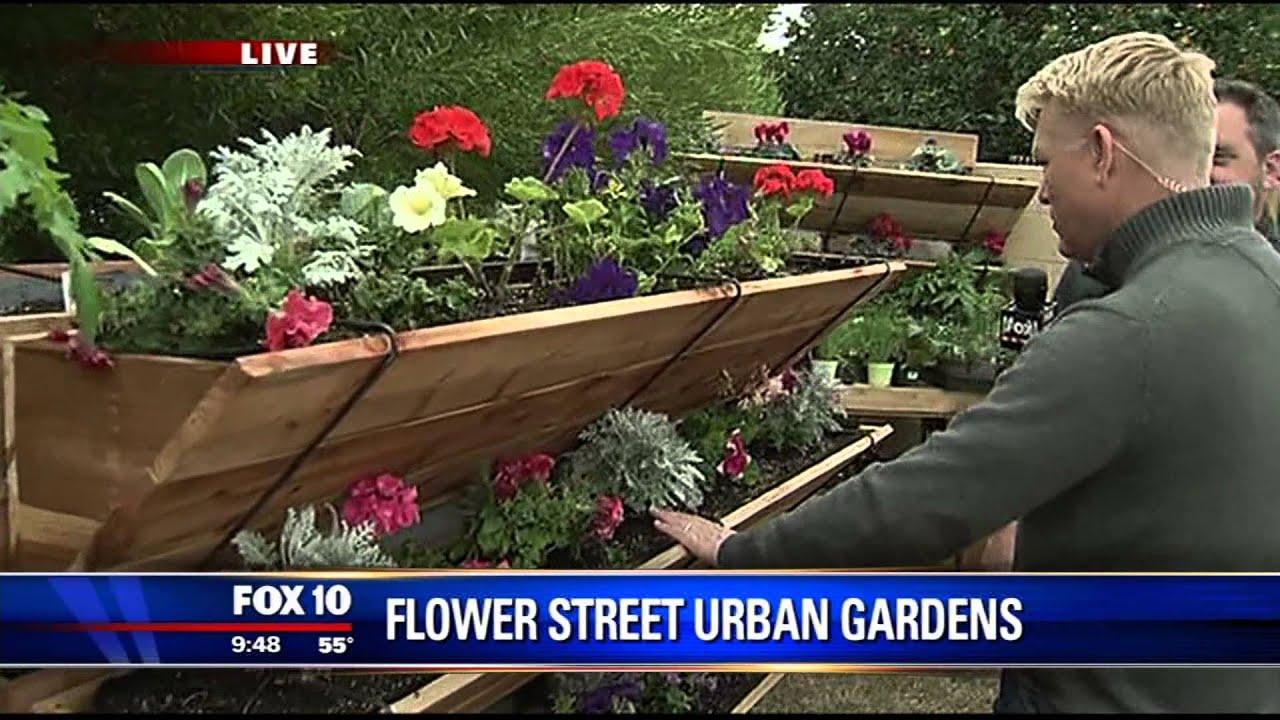 Flower Street Urban Gardens on Fox 10 AM - YouTube