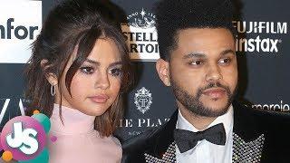 Selena Gomez APOLOGIZING to The Weeknd Over Breakup Drama!? - JS