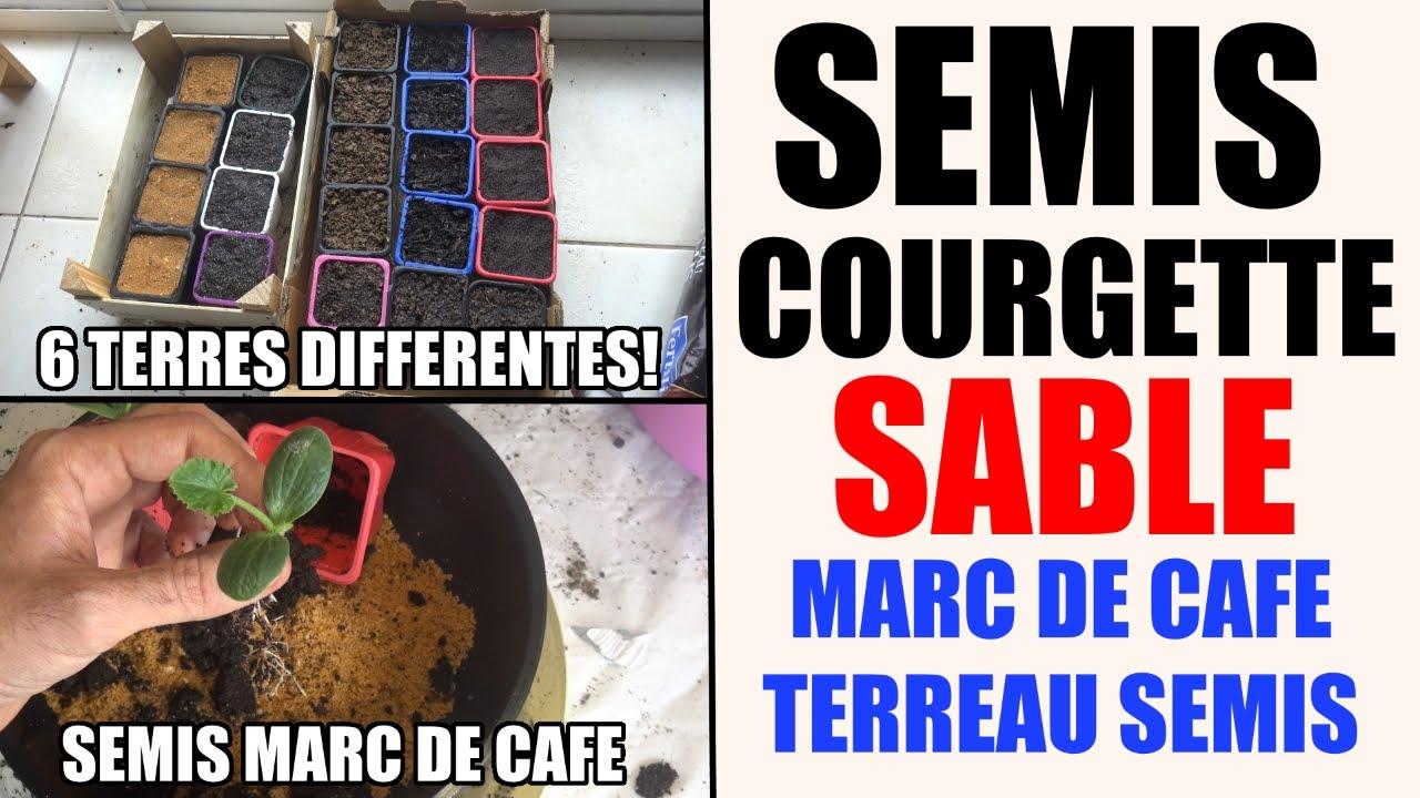 Semis de courgette sable marc de caf terreau aldi terreau semis fertilig ne youtube - Comment faire bruler du marc de cafe ...