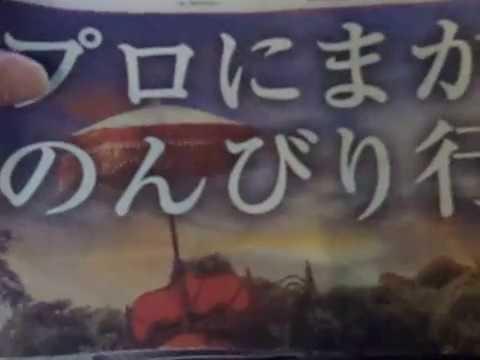 GEDC0038 2015.05.14 nikkei news paper in ninan-urawa     AFNradioなど