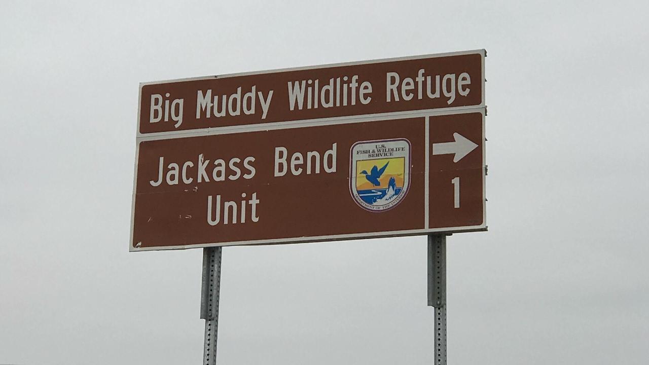 Jack ass bend unit