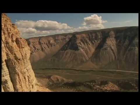 David Allen Slater - Swim (HD Music Video)