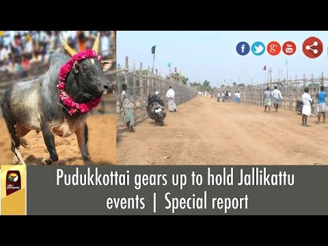 Pudukkottai gears up to hold Jallikattu events | Special report