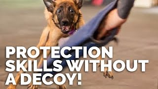Teaching Protection Skills Without A Decoy With Michael Ellis Dvd Commercial