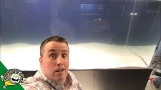 800 Gallon Aquarium live stream thumbnail