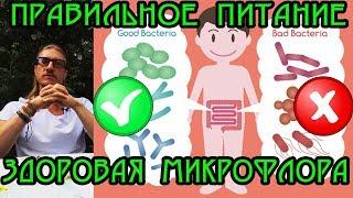 Дисбактериоз 🍴 Правильное питание для здоровой микрофлоры кишечника!