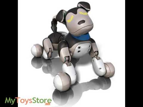 Zoomer Shadow Interactive Puppy Robot Dog Youtube