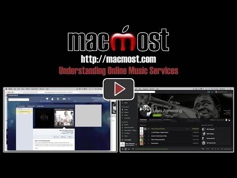 Understanding Online Music Services (#1104)